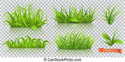 set, primavera, realistico, grass., vettore, verde, 3d, icona