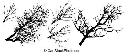 set, rami, silhouette, albero, illustrazione, vettore