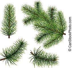 Set realistic fir branches