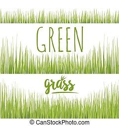 Set realistic green grass lawn