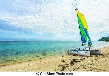 Set Sail Little Boat