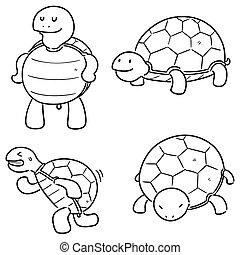 set, schildpad, vector