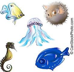 Set sea fish