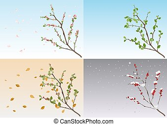 Set season nature. Branch