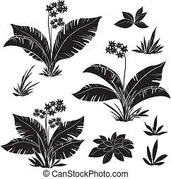 set, silhouette, fiori, erba