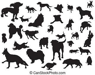 set, silhouette, honden
