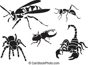 set, silhouette, isolato, insetto, vettore, bianco