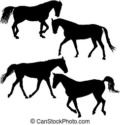 Set silhouette of black mustang horse vector illustration