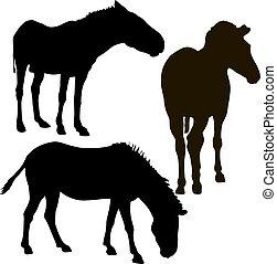 set, silhouette, zebra, achtergrond, afrikaan, witte