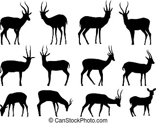 Set silhouettes of antelopes.