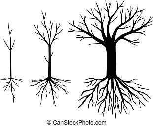 Set silhouettes trees without leaves