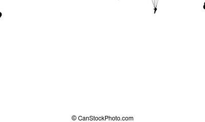 Set skydiver, silhouettes parachuting. White screen...