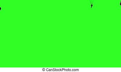 Set skydiver, silhouettes parachuting. Green screen...