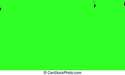 Set skydiver, silhouettes parachuting. Green screen...