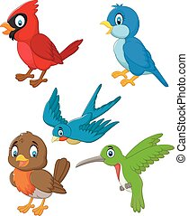 set, spotprent, verzameling, vogels