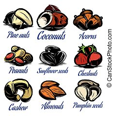 set symbols patterns of different colored seeds, nuts, fruits