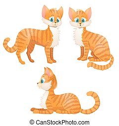 set., tabby, illustration, chat, vecteur, orange, dessin animé