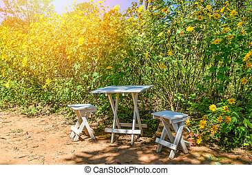 set table chair in the garden summer day with yellow flower field