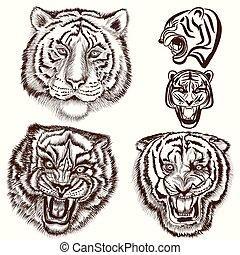 set, tigri, mano, disegnato, inciso, style.eps