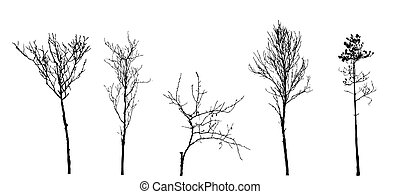 set tree silhouette on white background, vector illustration