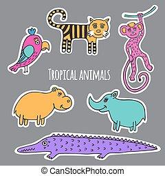 Set tropical animals