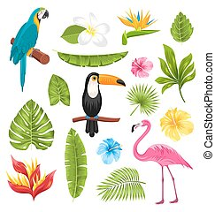 Set Tropical Flowers, Exotic Birds and Plants