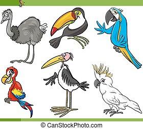 set, uccelli, illustrazione, cartone animato