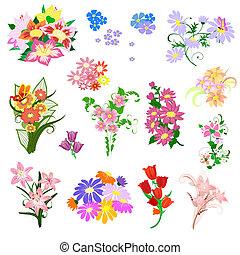 set, uno, mazzolino fiori