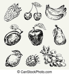 set, van, fruits., freehand, tekening