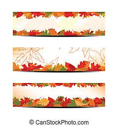 set, van, kleurrijke, autumn leaves, spandoek, of, web, header