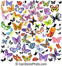 set, van, lieveheersbeest, en, vlinder