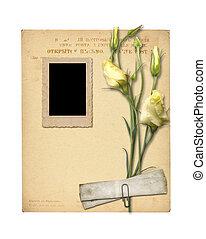 set, van, oud, archivaal, papieren, en, ouderwetse , postkaart, met, bouquetten, van