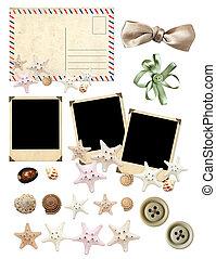set, van, oud, postkaart, foto's, en, starfishes