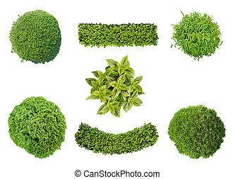 set, van, planten, in, luchtmening
