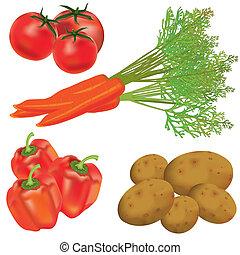 set, van, realistisch, groentes