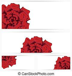 set, van, rode rozen, vrijstaand, op wit, achtergrond