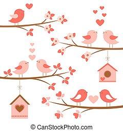 set, van, schattig, vogels, verliefd, op, bloeien, takken
