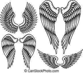 set, van, vleugels