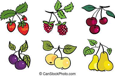 set, van, vruchten, en, besjes