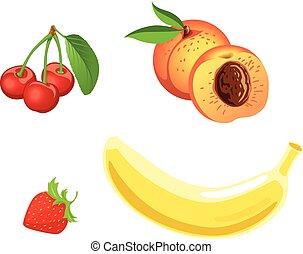set., vector, fruta