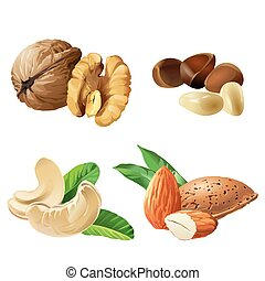 Set vector icons of nuts