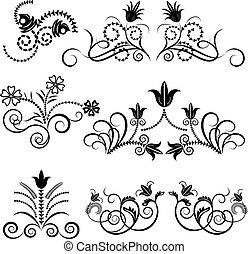 set., vektor, design, blumen-, schwarz, weißes