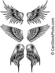 set, vleugels