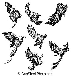 Set  Wings isolated on white background,hand drawing