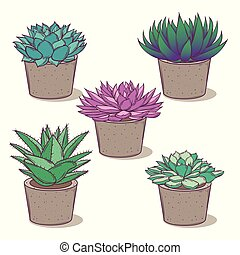 Set with a beautiful succulents. Cartoon vector isolated on white.