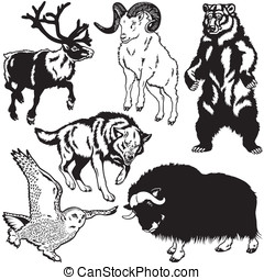 set with animals of arctic