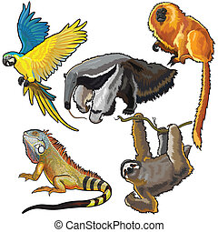 set with animals of south america