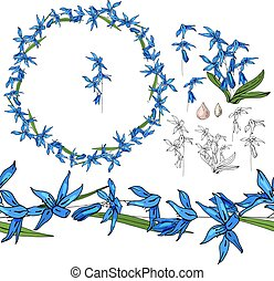 Set with blue primrose on white.