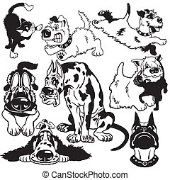 set with cartoon dogs black white