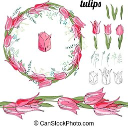 Set with  different tulips on white.